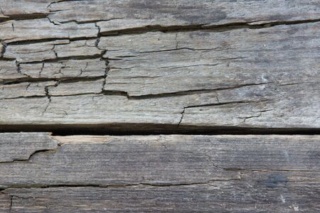 The texture of the old gray cracked board 免版税图像