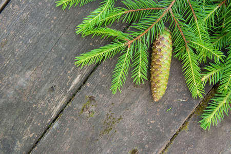 Green spruce branch with a cone on the wooden background. 免版税图像