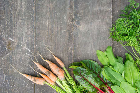 Young carrot, fresh beetroot leaves and sorrel on the surface of an old wooden table
