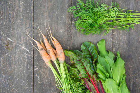 Young carrot, fresh beetroot leaves and sorrel on the surface of an old wooden table Фото со стока