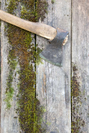 Vintage axe with wooden handle on antique moss boards. Copy space background