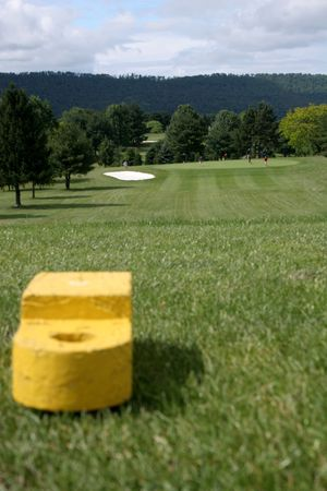 Golf tee with fairway grass and distant green