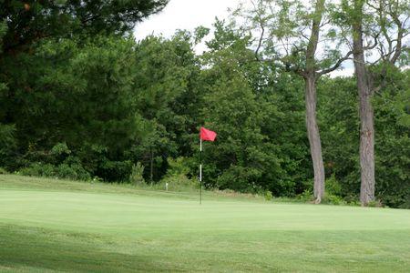 フラグと緑のゴルフ