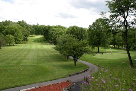フェアウェイと隣接する緑、森ゴルフ ティー
