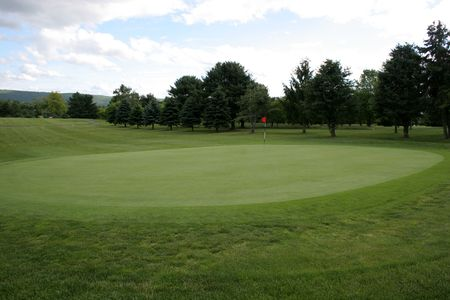 Golf green with flag and fairway 版權商用圖片