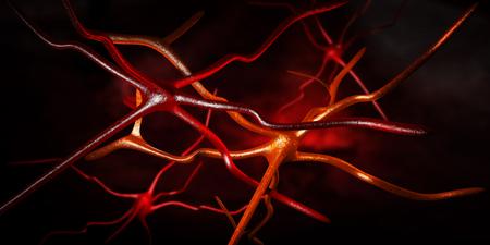 cellule nervose: Illustrazione 3D di opere d'arte computer di cellule nervose