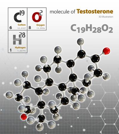testosterone: 3d Illustration of Testosterone Molecule isolated grey background