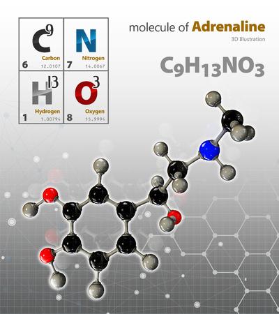 adrenaline: 3d Illustration of Adrenaline Molecule isolated grey background Stock Photo