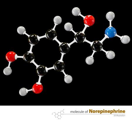norepinephrine: 3d Illustration of Norepinephrine Molecule isolated black background