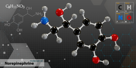 3d Illustration of Norepinephrine Molecule isolated gray background
