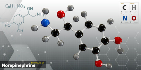 norepinephrine: 3d Illustration of Norepinephrine Molecule isolated gray background