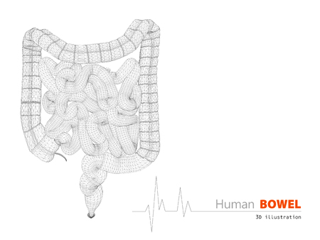 bowel disorder: 3d Illustration of Bowels abstract scientific background