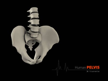 groin: 3d illustration of pelvis abstract scientific background