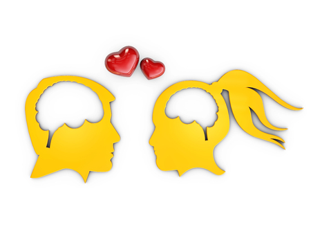 Lovers human heads with brain, 3d Illustration isolated White