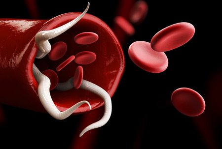 gastritis: 3d Illustration of a group of Helminths with cell blood