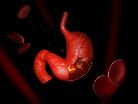 Helicobacter Pylori, mikroaerophile Bakterien im Magen. Abbildung 3D Standard-Bild - 90227987