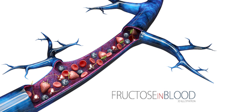 3d Illustration of glucose level in blood, isolated white. Фото со стока