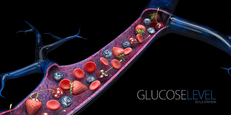 Blood sugar level or glucose level. Blood vessels with fruits and red blood cells, 3d Illustration.