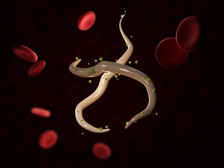 Microfilaria worms in blood, 3D illustration. Archivio Fotografico