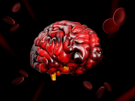 3d Illustration of model of human brain on black background