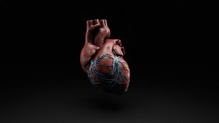 Anatomy of Human Heart Isolated on black, 3d Rendering 版權商用圖片 - 132123409