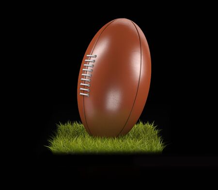 3D Rendering of a Rugby Ball on the grass