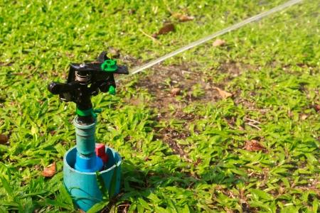 Sprinkler in garden photo