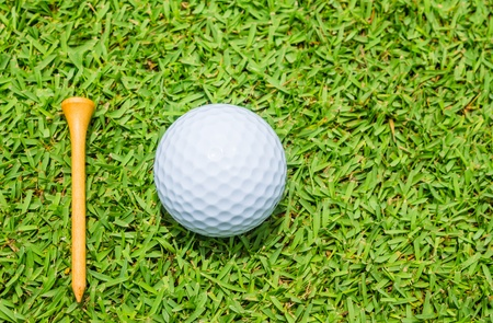 concomitant: golf ball on a green meadow
