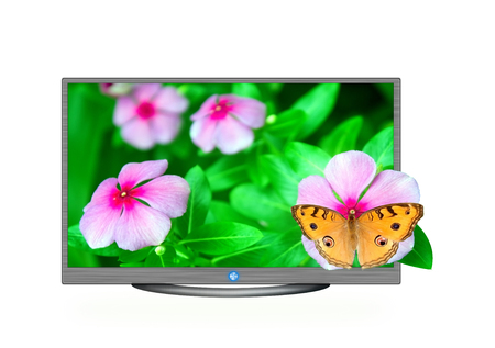 butterfly in 3d television on isolated  photo