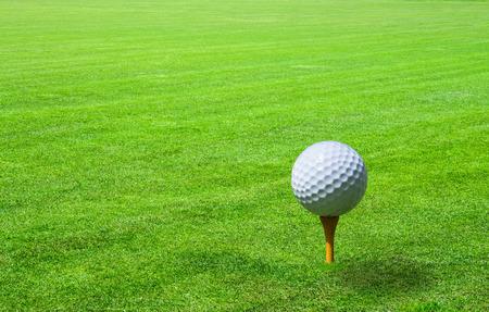 golf swing: golf ball in green grass