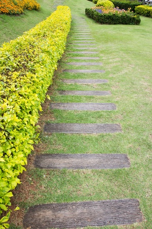 wooden pathway in the garden photo