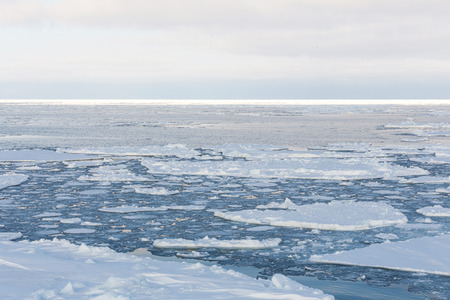 Drift ice in Sea of Okhotsk, Japan