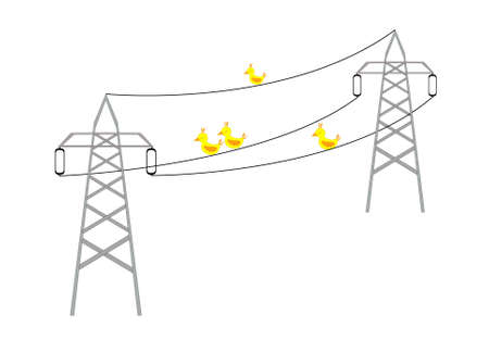 Four yellow birds sitting on a electrical wires Vector