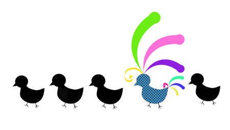 rubber ducks: Four black birds and one colorful bird with green, pink, yellow, violet and blue feathers, walking in the line