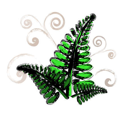 Green fresh fern plant with light brown swirls around, isolated on white