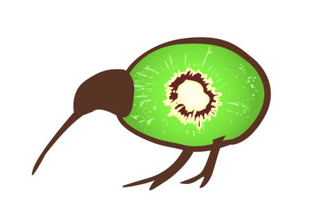 Small black kiwi bird wit body formed by kiwi fruit, flightless bird, symbol of New Zealand Vector