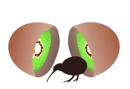 kiwi fruit: Peque�o p�jaro kiwi negro que sale de kiwi, ave no voladora, s�mbolo de Nueva Zelanda