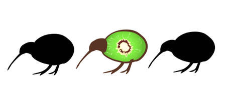 Three small kiwi birds in a line, one with kiwi fruit forming his flightless body, symbol of New Zealand Illustration