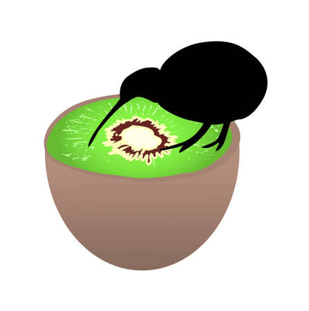 Small black kiwi bird sitting on a kiwi fruit, flightless bird, symbol of New Zealand Illustration