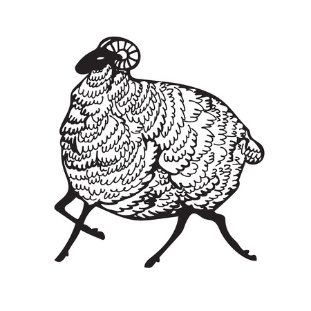 The ram is running. Black sheep. Doodle style illustration. Vektorové ilustrace