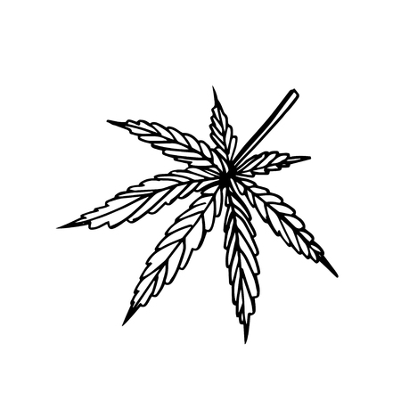 Vector image of a cannabis leaf Vetores