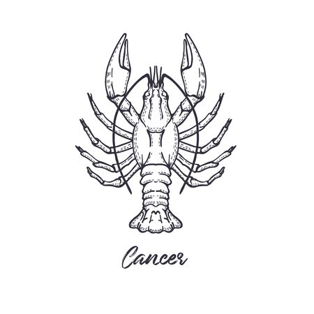 Cancer Zodiac constellation. The symbol of the astrological horoscope. Vettoriali