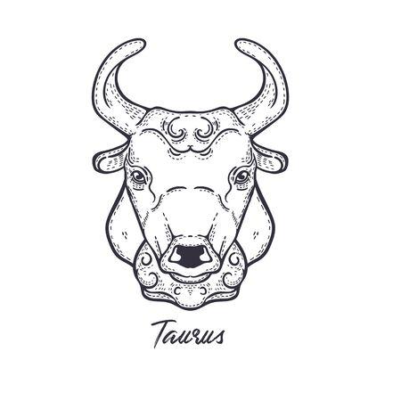 Taurus Zodiac constellation. The symbol of the astrological horoscope.