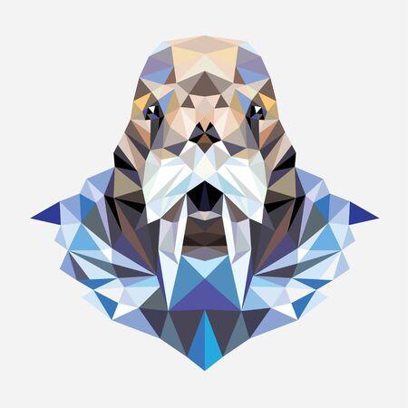 Polygonal portrait of a walrus.