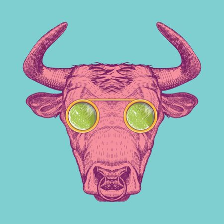 image of a cow with glasses. Bull painted in pink on a turquoise background.