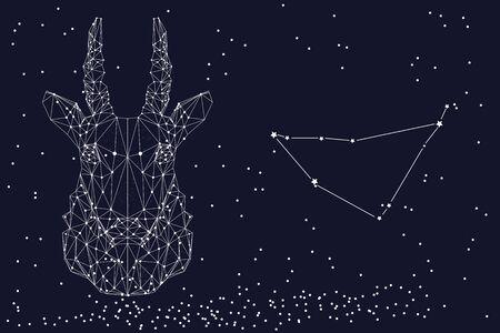 Zodiac sign Capricorn. The symbol of the astrological horoscope. Horizontal banner.