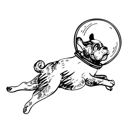 Vector image of a pug in the helmet of an astronaut. Illusztráció