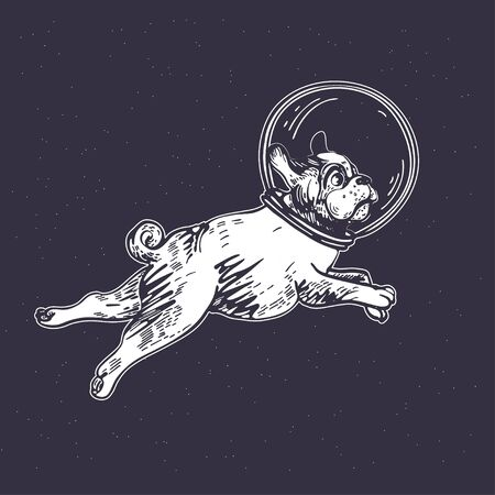 Pug astronaut flies in space. Cosmic illustration.
