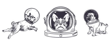 Set of dogs astronauts. Pugs and Boston Terriers. Animals in space helmets. Space exploration. Sketching illustrations. Hand-drawn graphics.