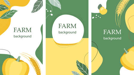 Set of agricultural backgrounds. Harvest. Abstract design. Flyer backgrounds. banners, posters.